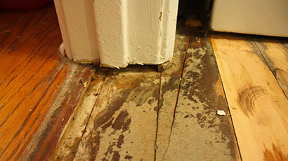 Old Floor Removal